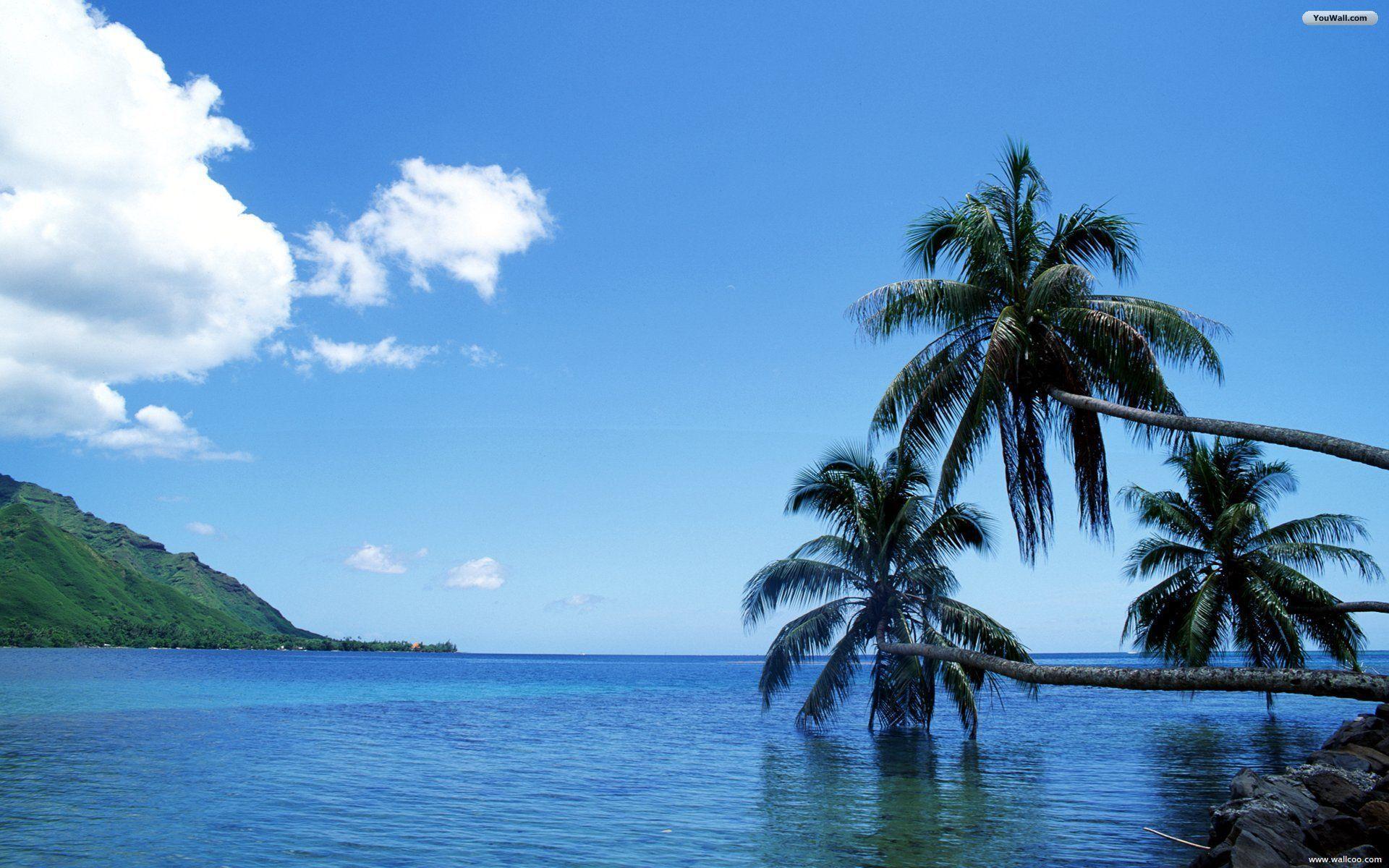 Download Beach Sea Wallpaper Gallery: Tahiti Wallpapers