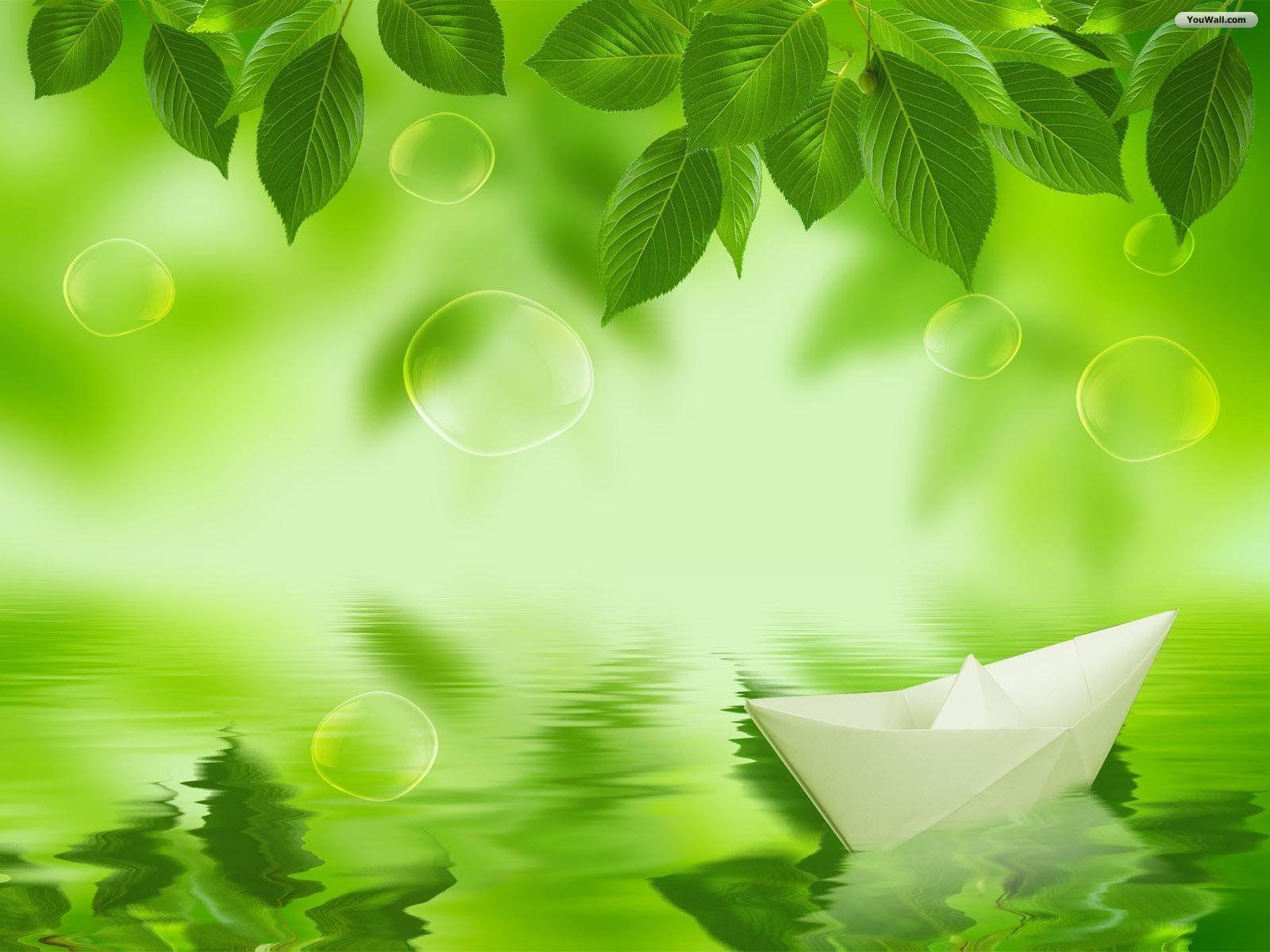Green Leaves Wallpapers Wallpaper Cave