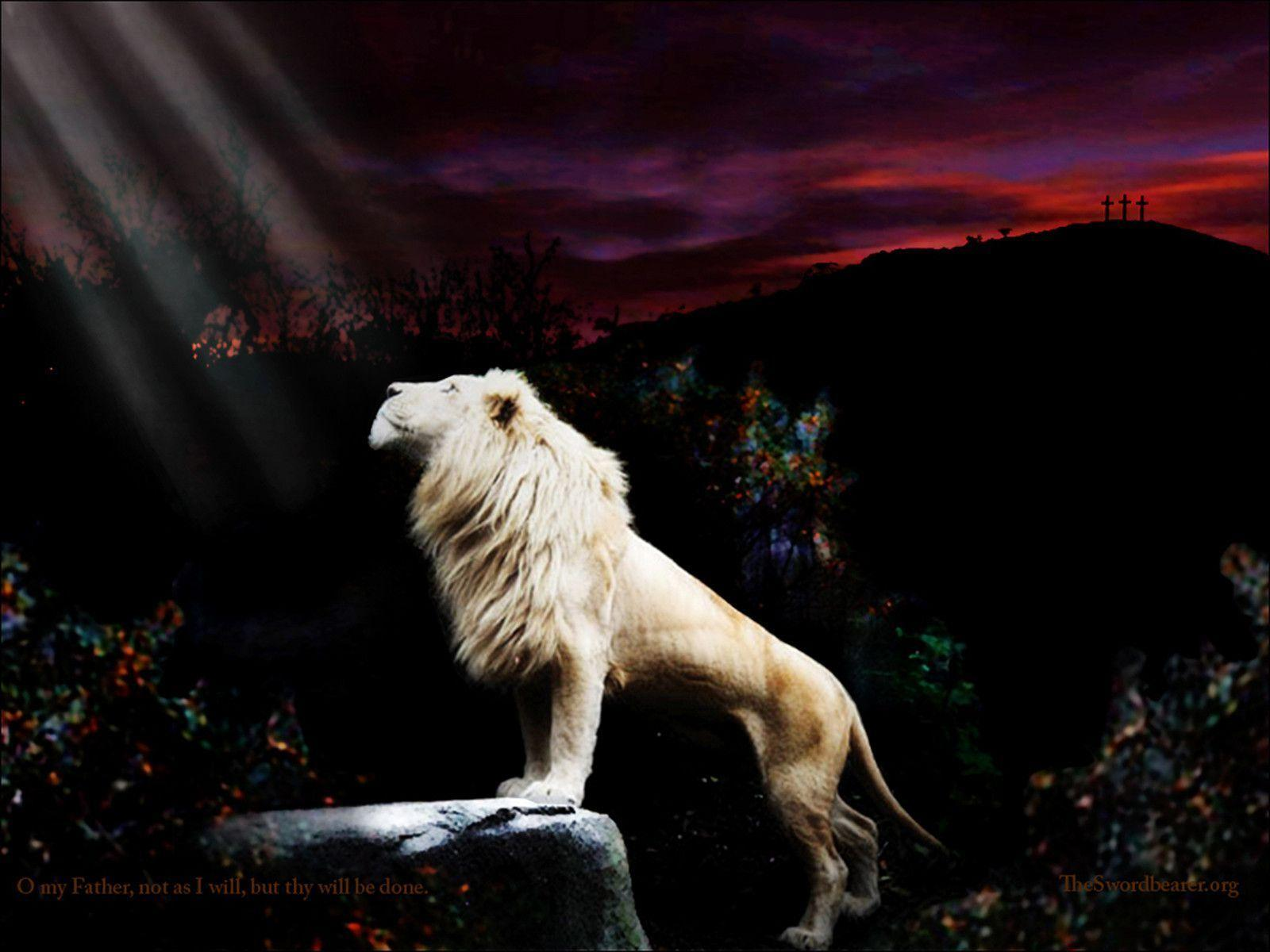 Wallpaper: The Lion of the tribe of Judah in Gethsemane with