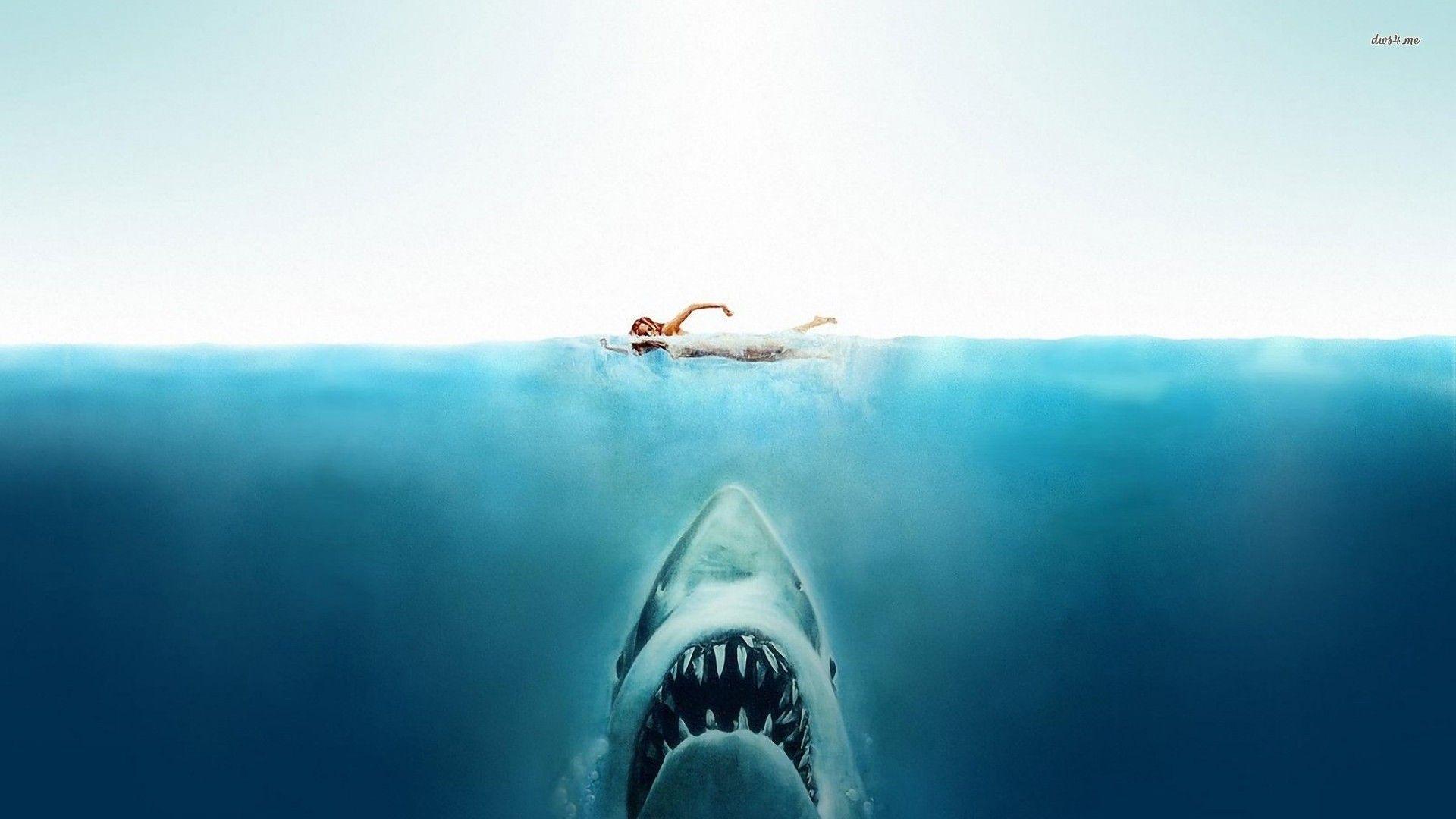 jaws wallpaper