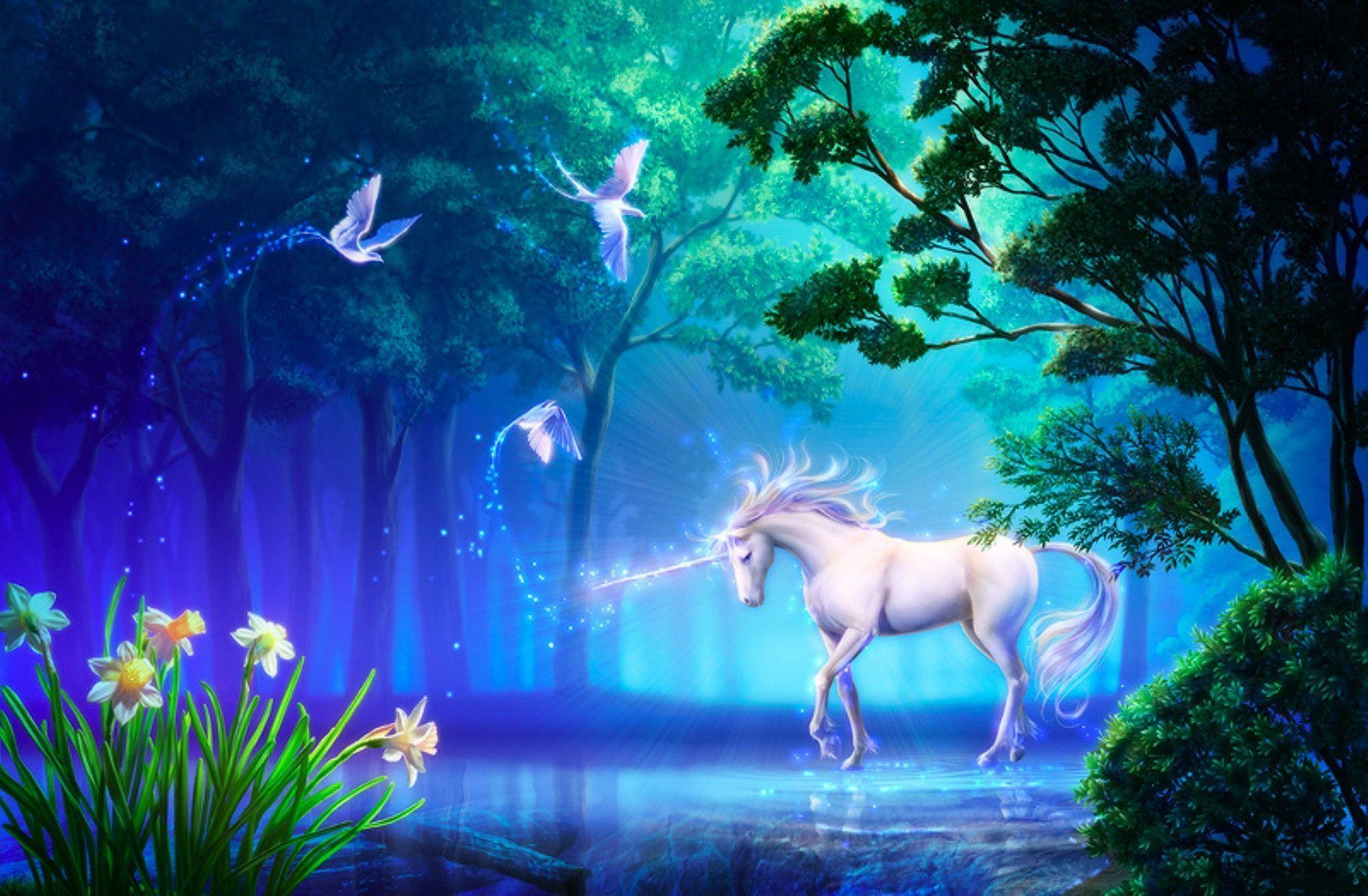 Unicorn Backgrounds For Desktop ...