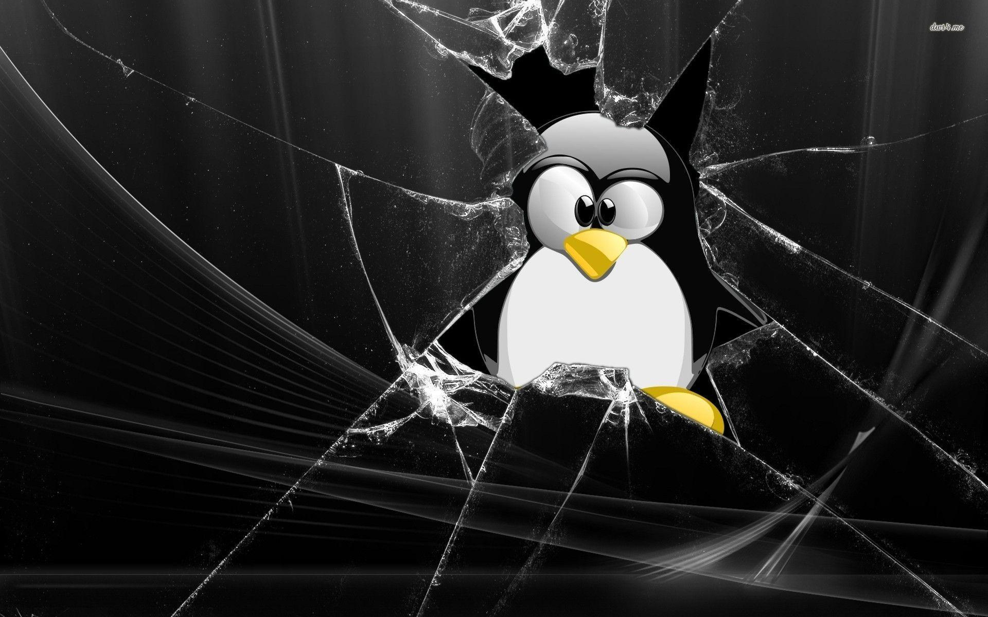 Tux through broken window wallpaper - Computer wallpapers - #