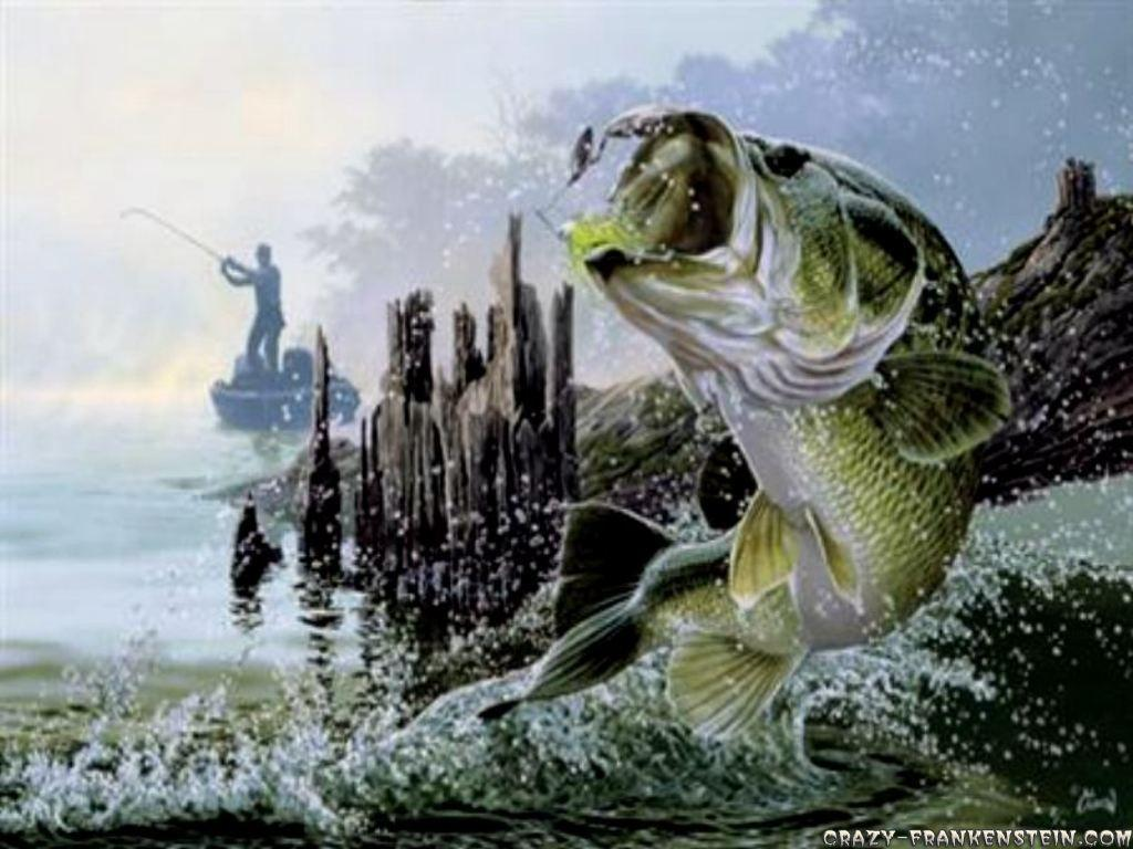 Fishing wallpapers wallpaper cave for Bass fish images