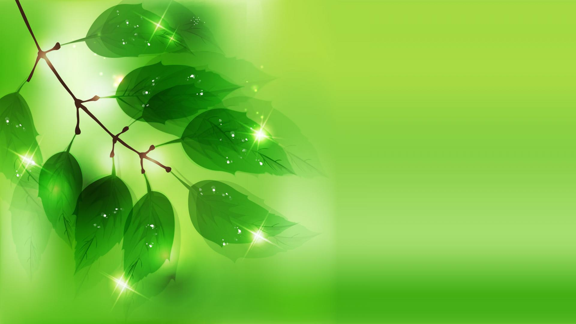 Green leaves wallpapers wallpaper cave for Green and white wallpaper