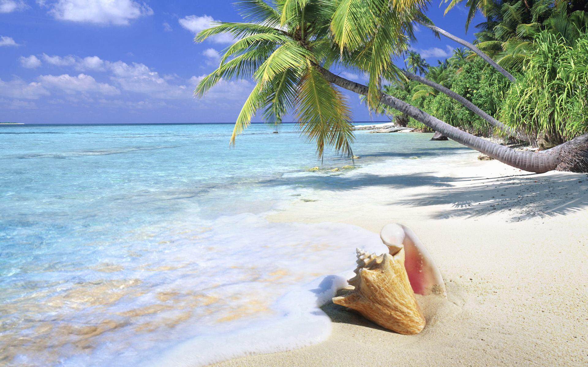 Hd Tropical Island Beach Paradise Wallpapers And Backgrounds: Tropical Beach Desktop Backgrounds