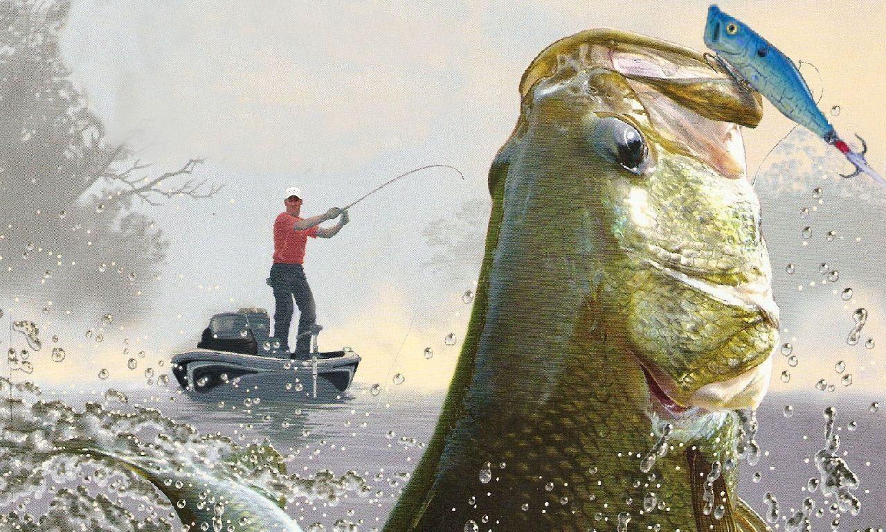 bass fishing pc wallpaper - photo #19