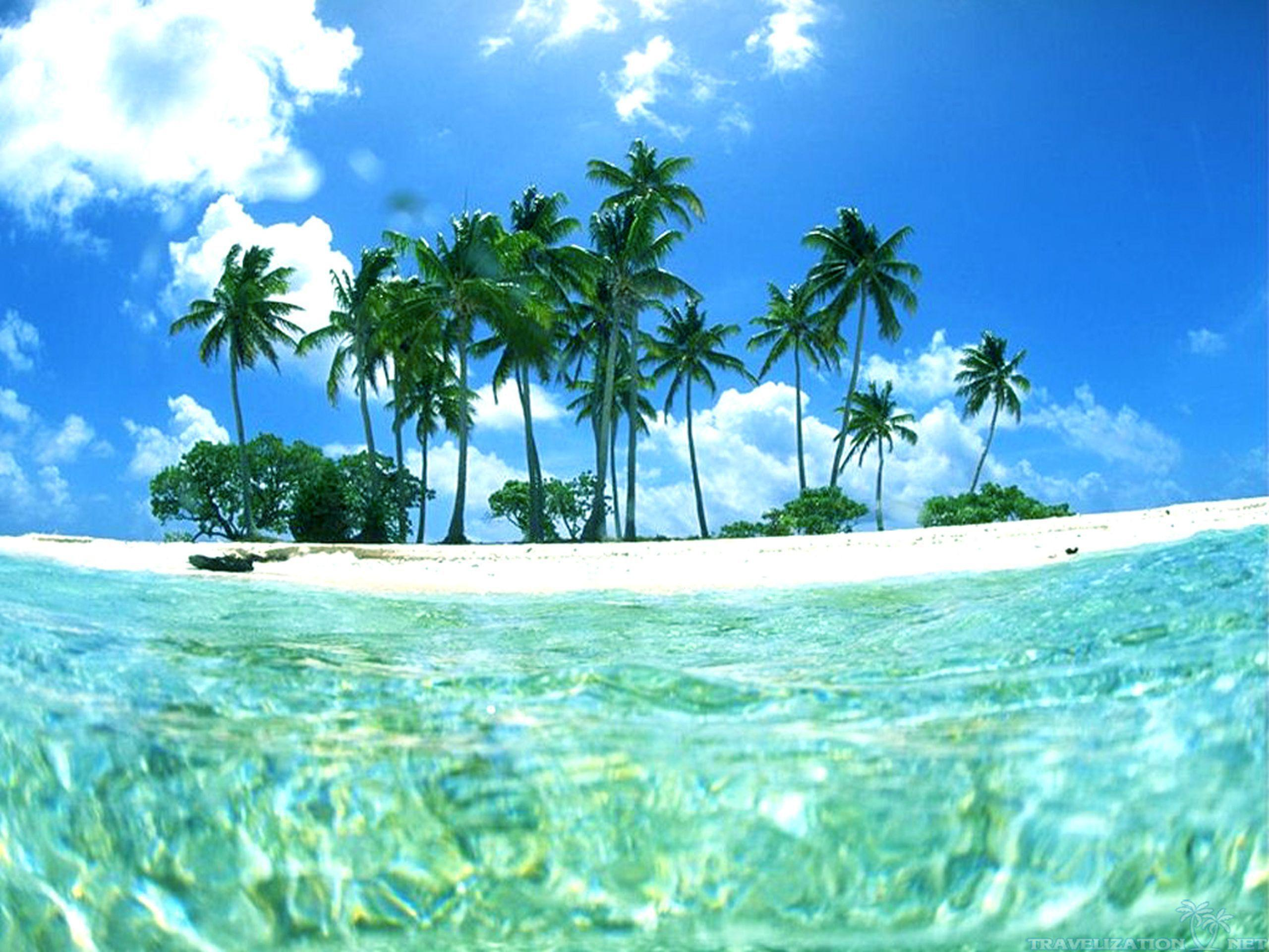 Hd Tropical Island Beach Paradise Wallpapers And Backgrounds: Tropical Beach Backgrounds