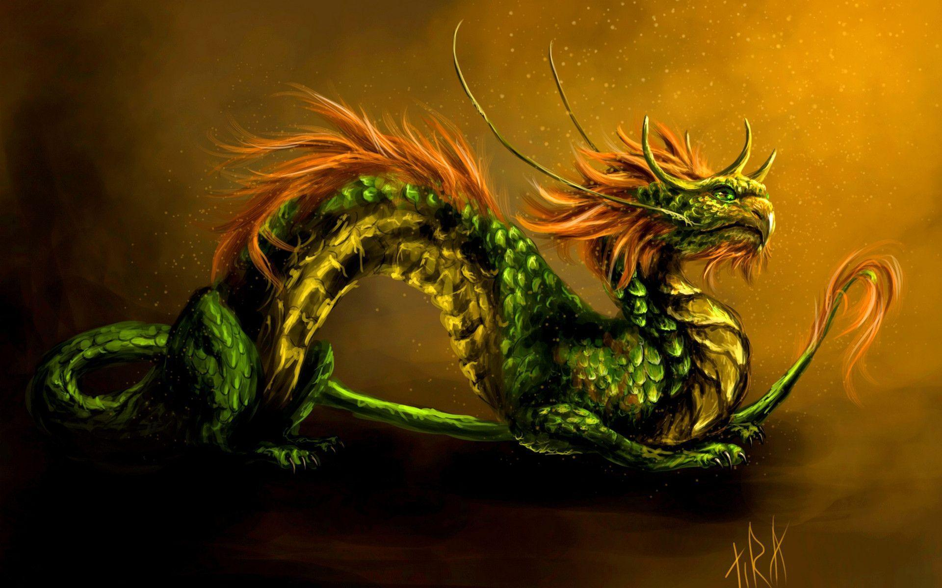 Green Dragon Backgrounds, wallpaper, Green Dragon Backgrounds hd