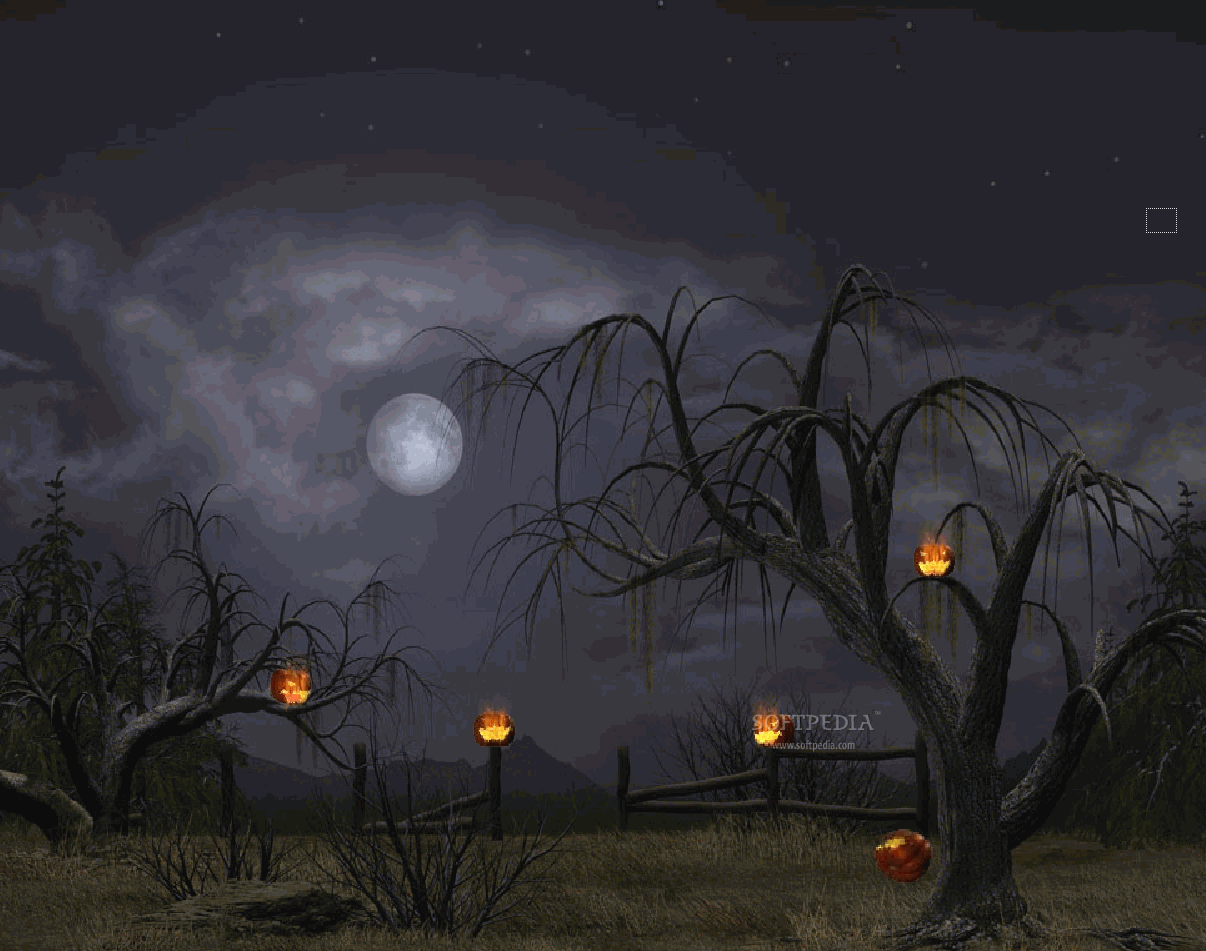 Backgrounds Halloween pictures