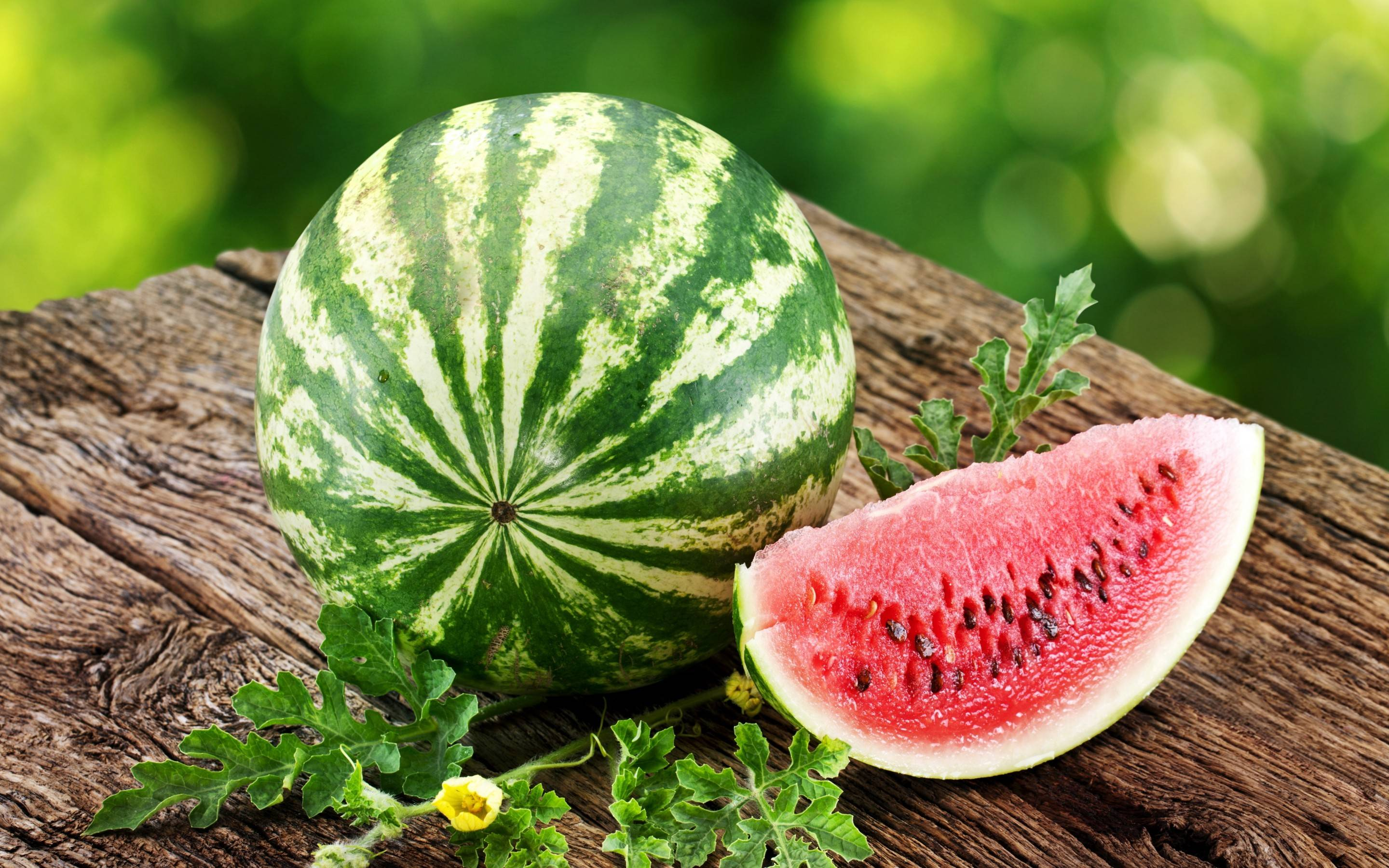Watermelon Wallpapers - Wallpaper Cave