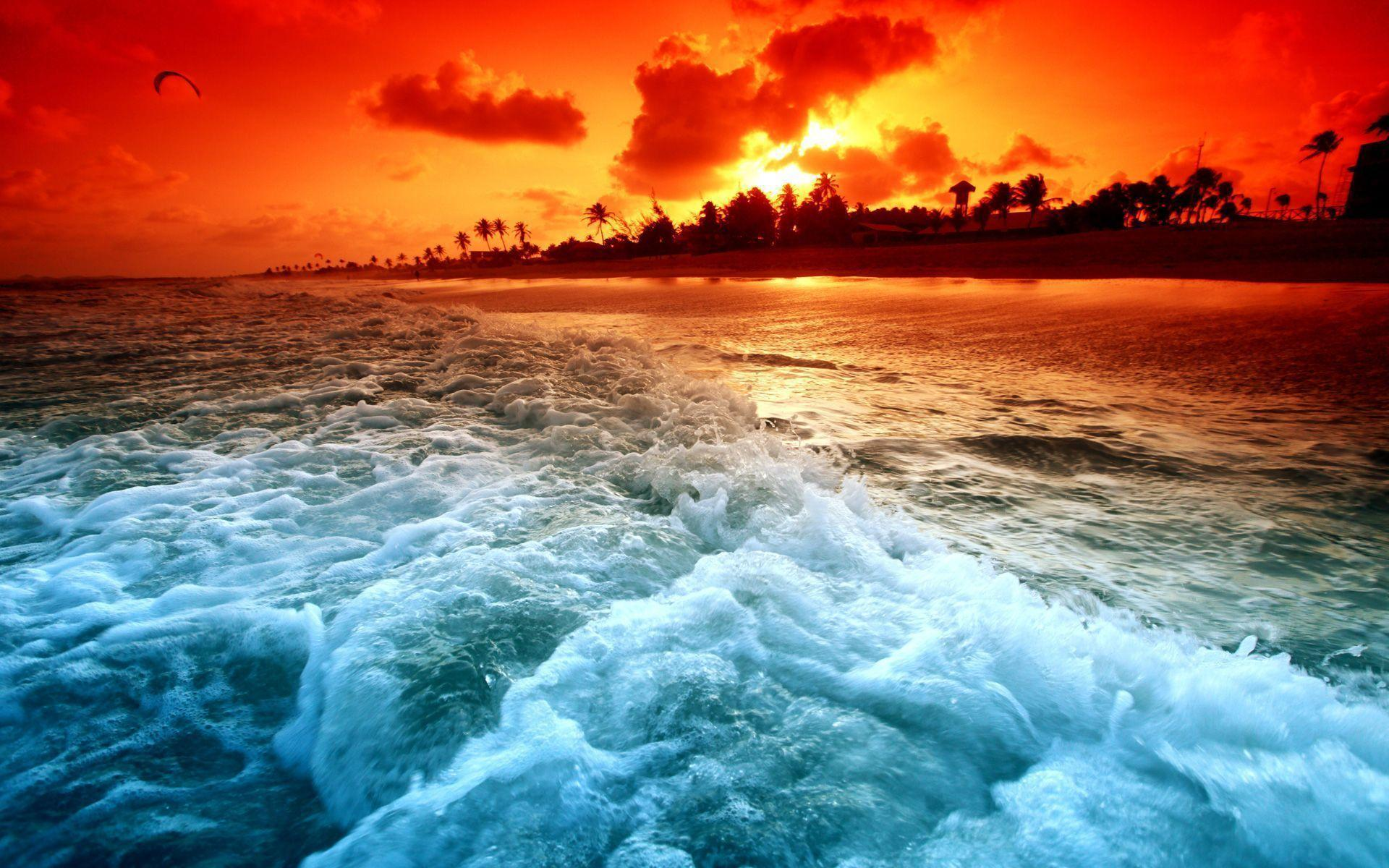 Tropical Backgrounds Wallpapers