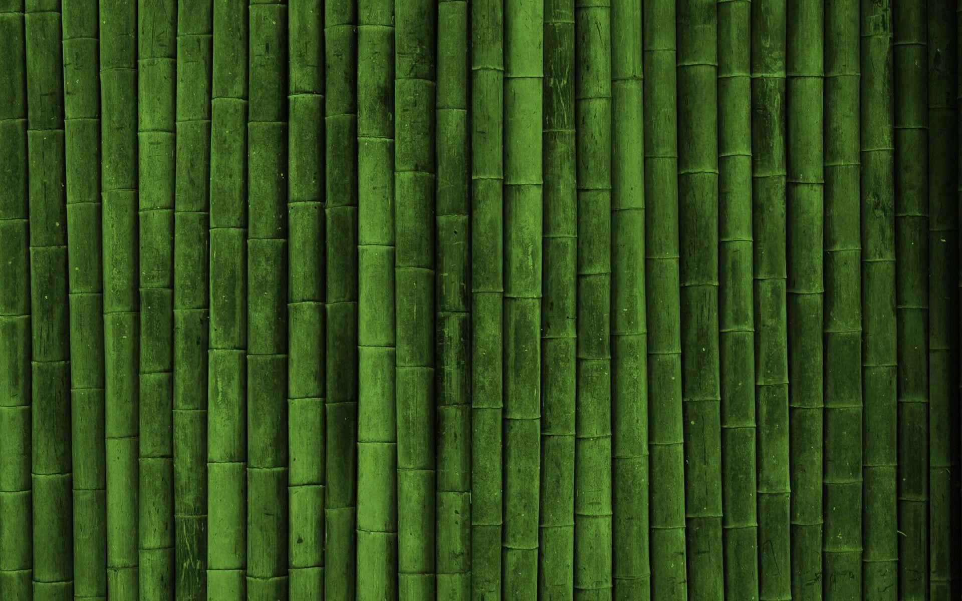 bamboo background nineteen photo - photo #13