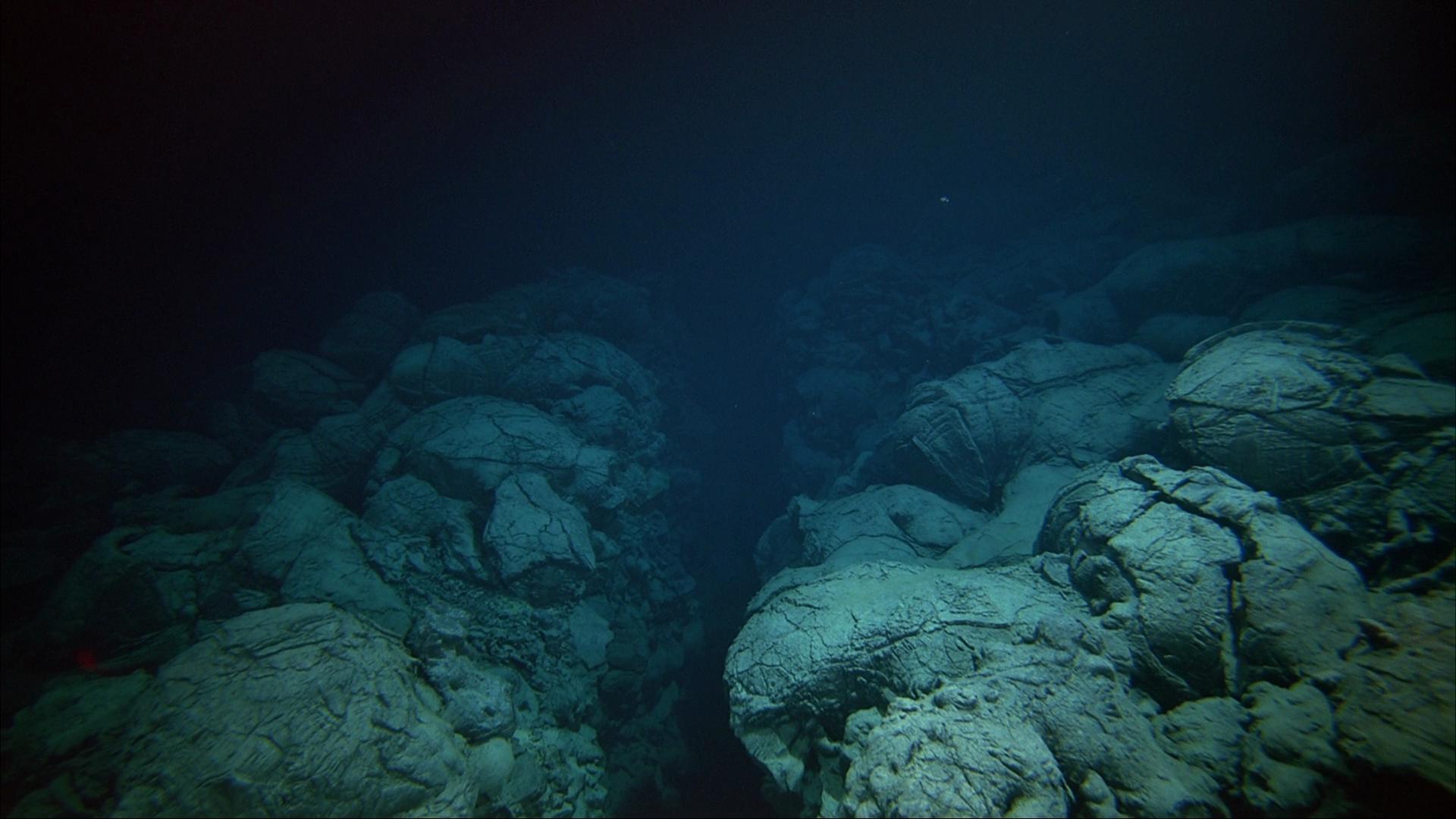 Ocean Floor Wallpapers Wallpaper Cave