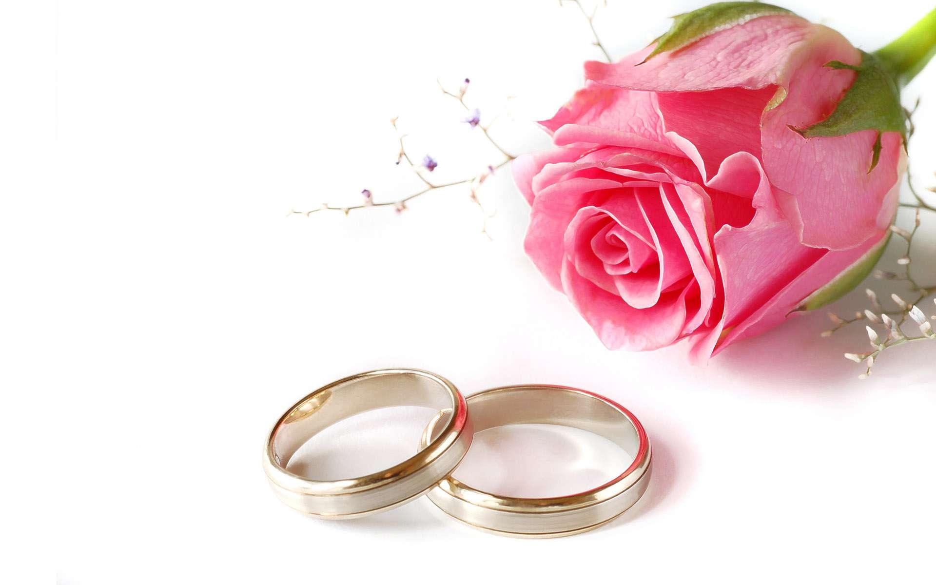 Wedding rings flowers  Wedding Flower Backgrounds - Wallpaper Cave