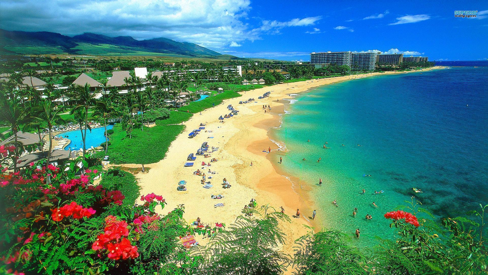 Pix For > Hawaiian Beach Wallpapers