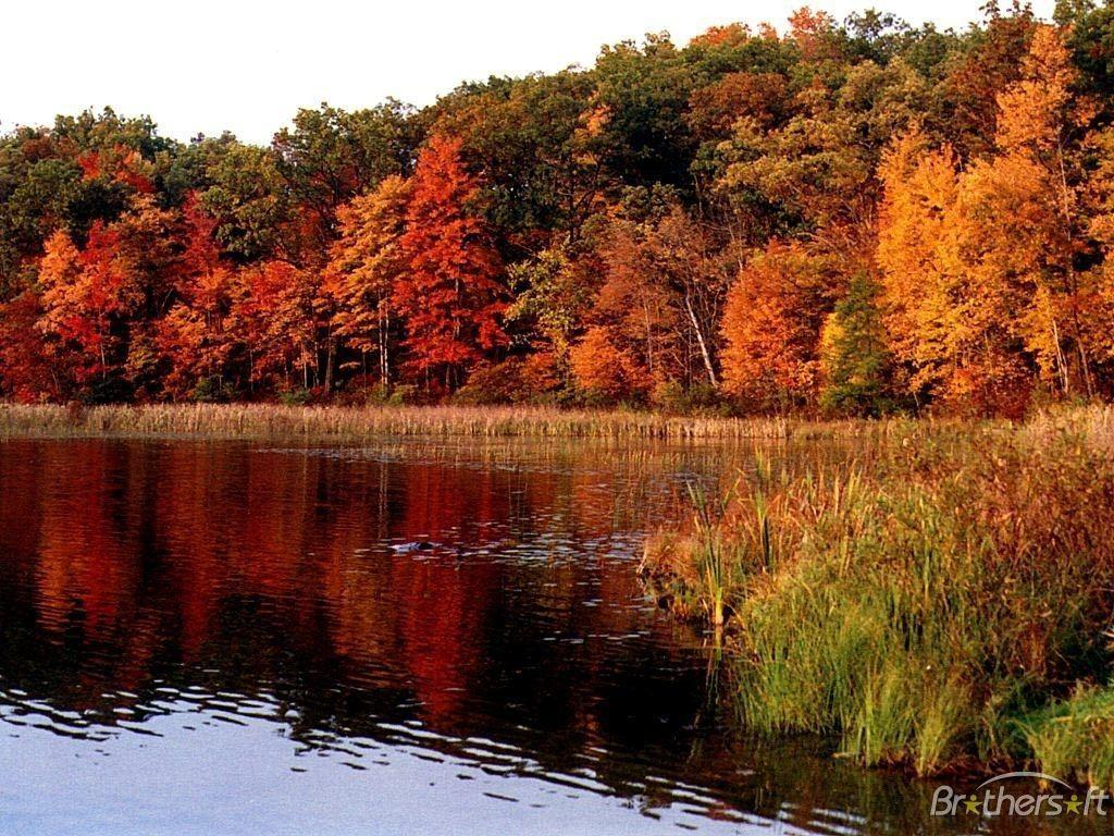 HD Lovely Lake Fall Wallpapers