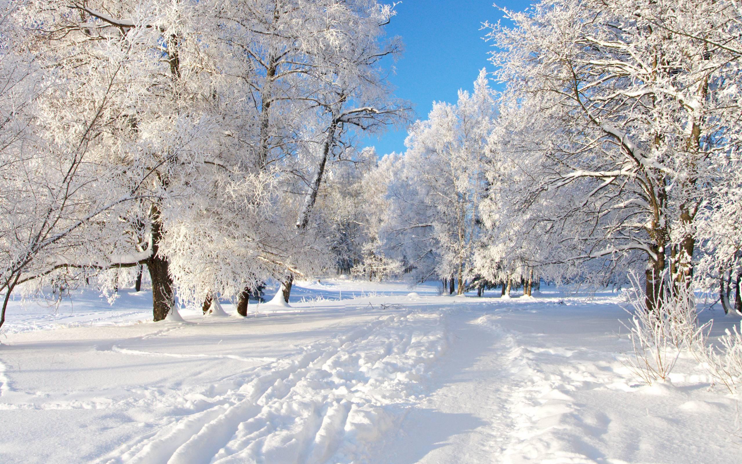snow landscape backgrounds - photo #6