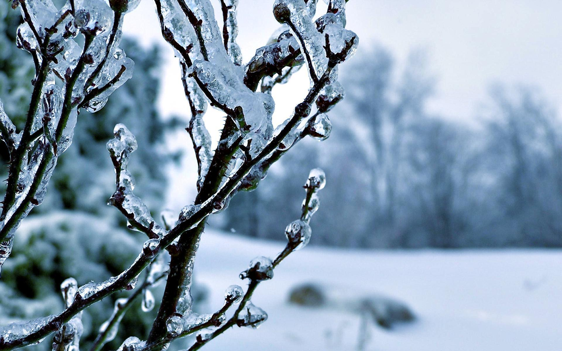 Winter Wallpaper 27 18430 HD Wallpaper | Wallroro.
