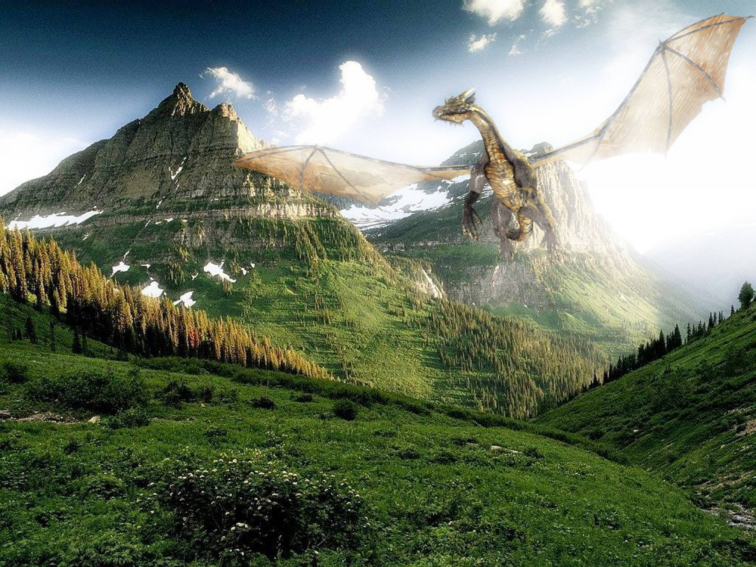 Stunning Hd Fantasy Wallpapers: Flying Dragon Wallpapers