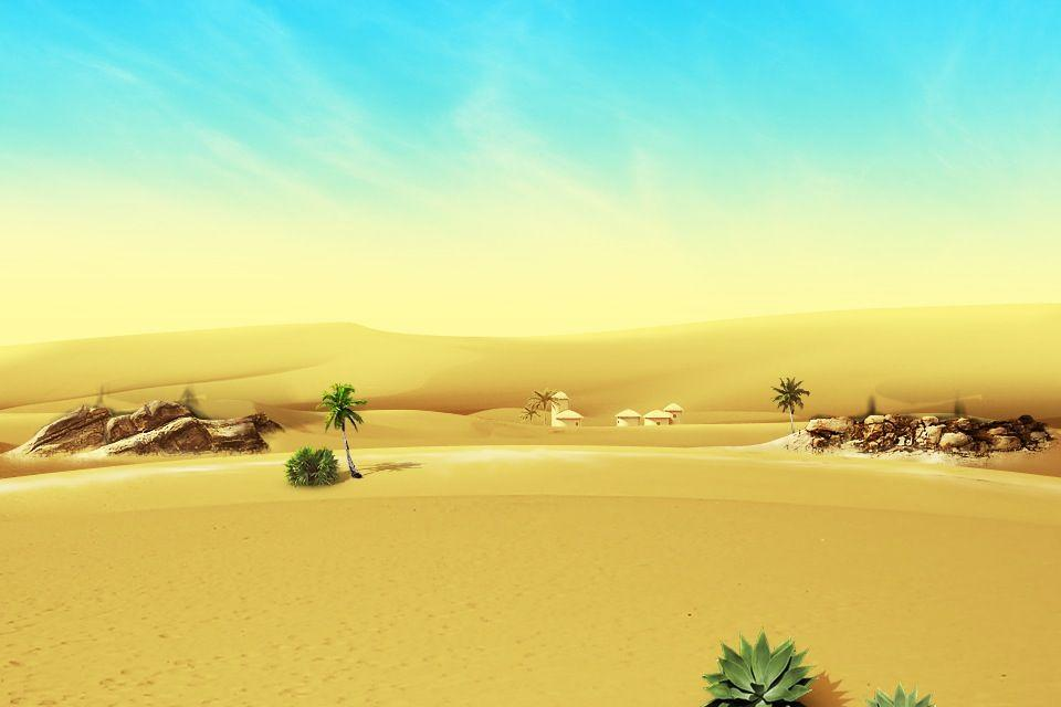 Desert / background - Picture of Desert Botanical Garden, Phoenix ...