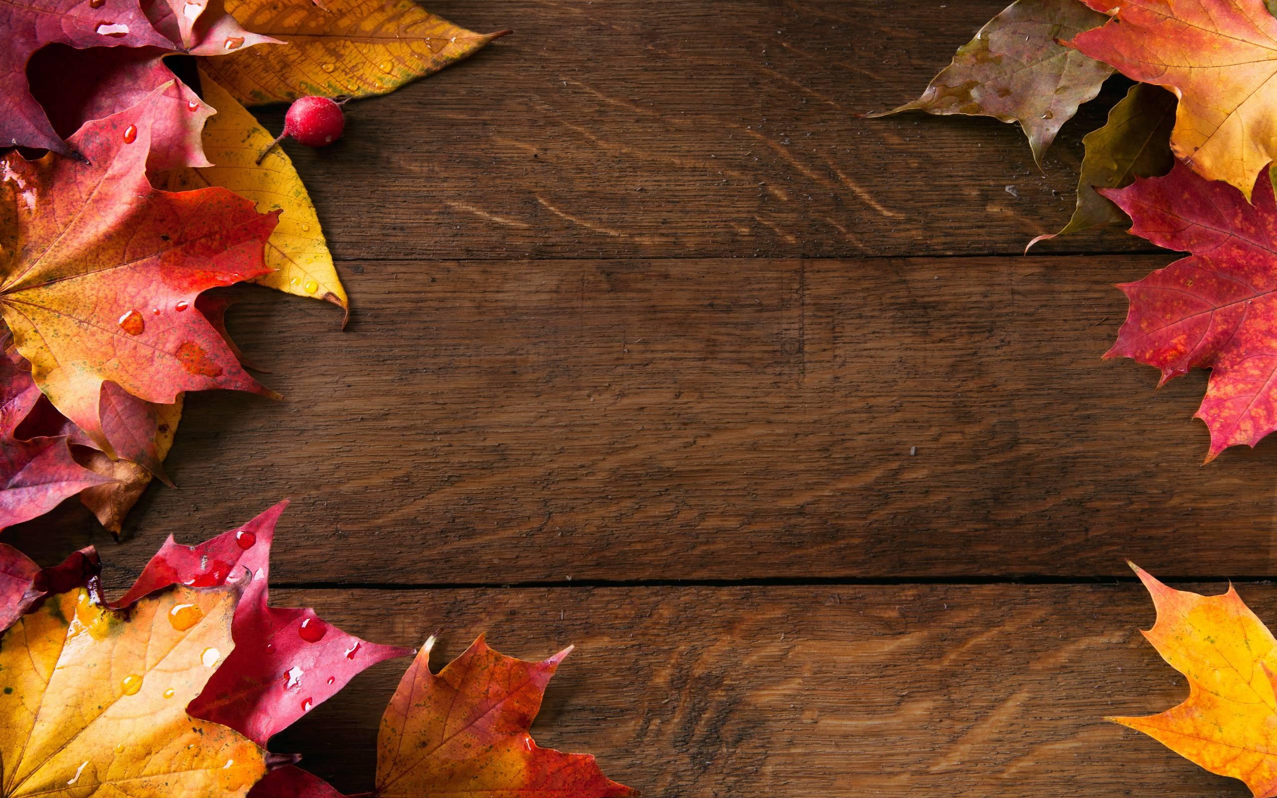 autumn wallpaper 007 free - photo #22