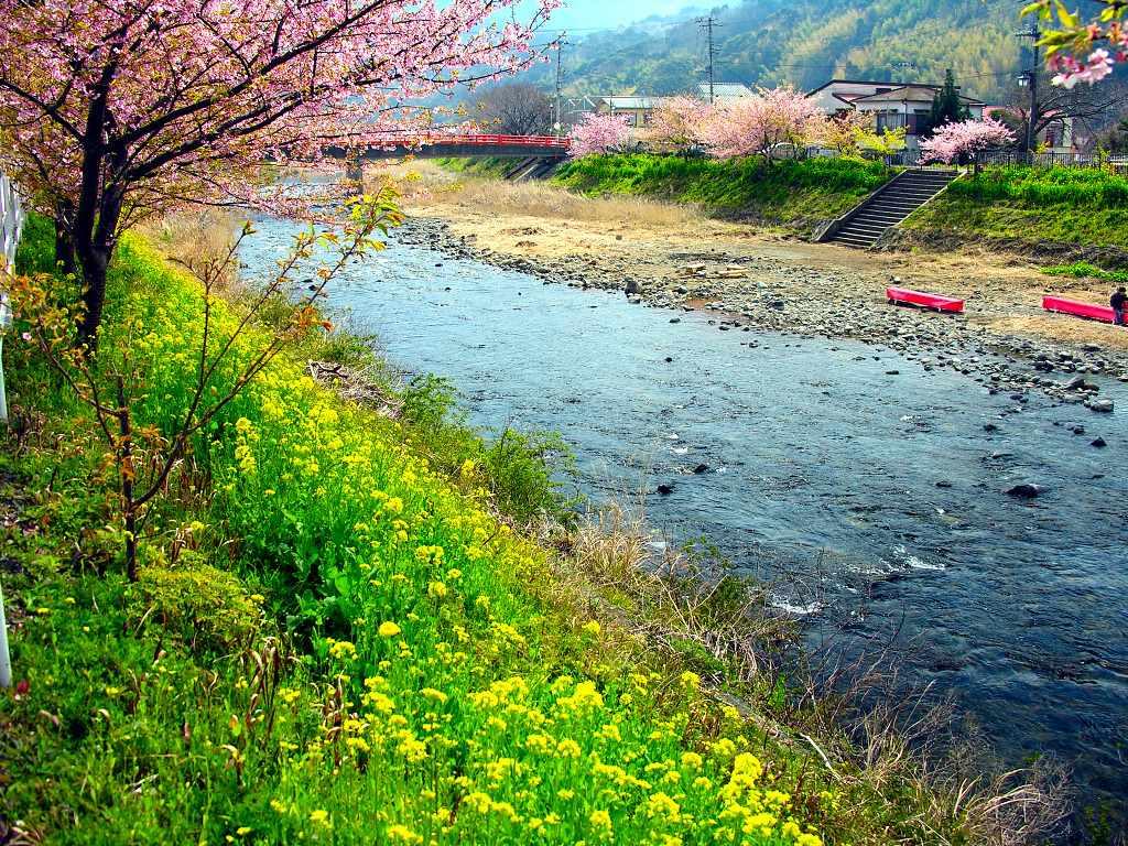 Japan Nature Wallpapers