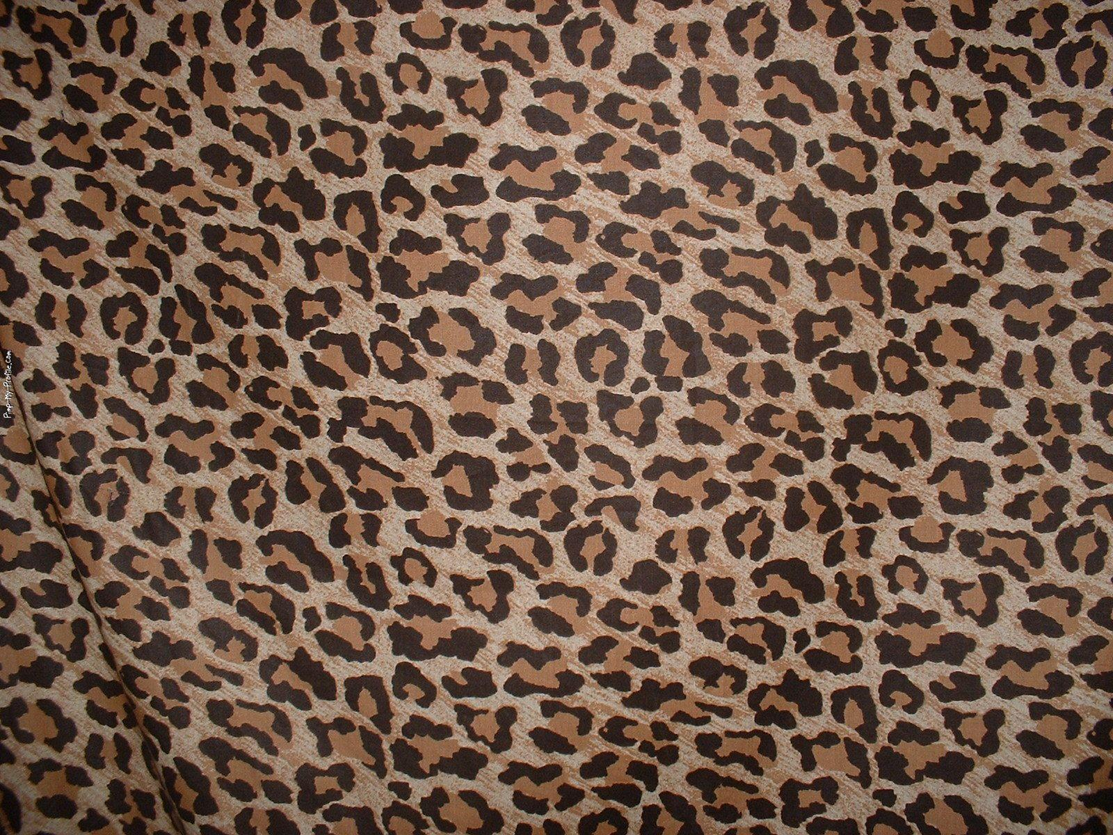 this animal print desktop - photo #1