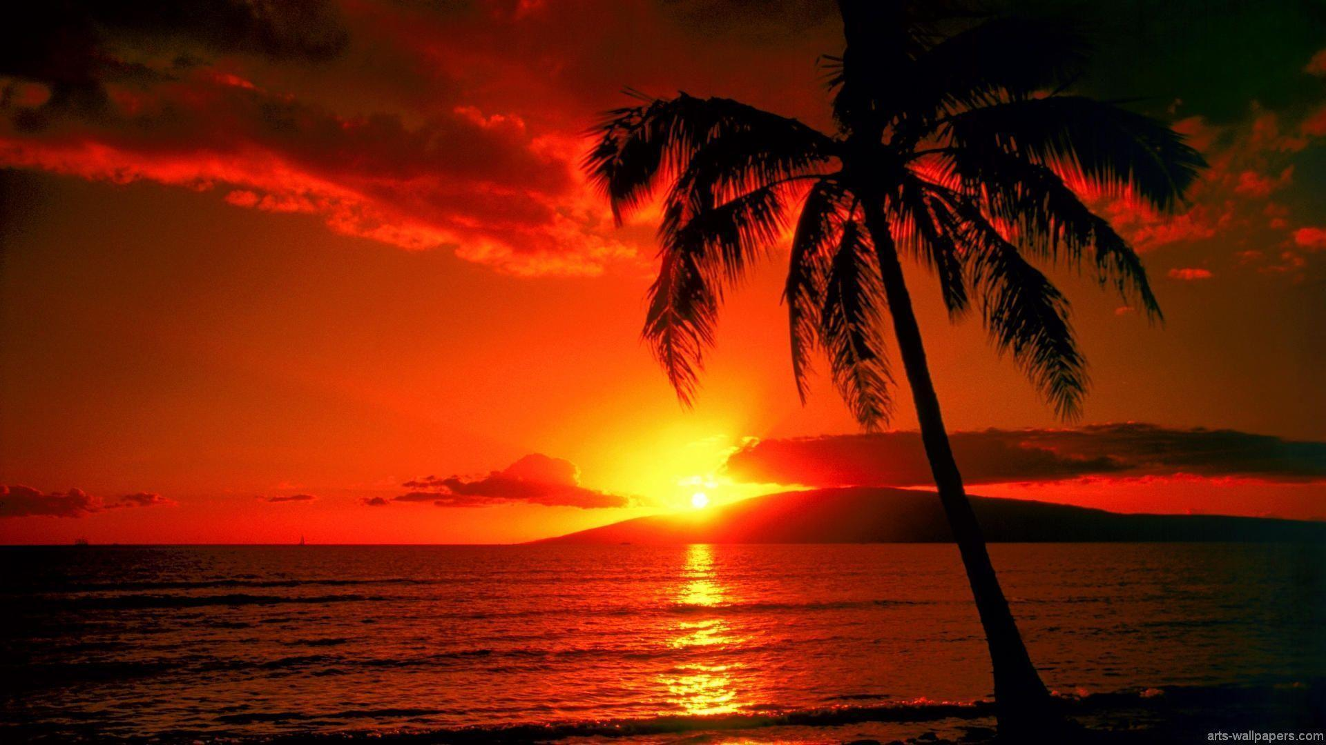 Tropical Island Sunset Wallpapers Wallpaper Cave