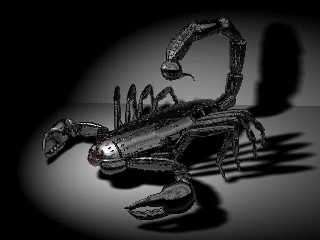 Black Scorpio Wallpapers