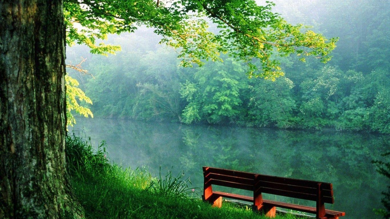 nature wallpapers 1366x768 wallpaper cave