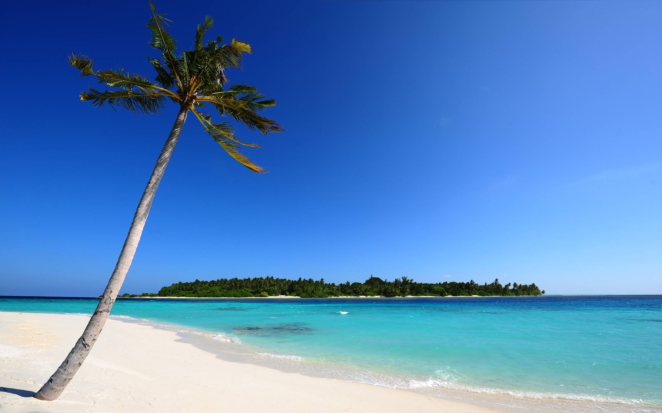 Maldivian Beach Wallpapers | HD Wallpapers