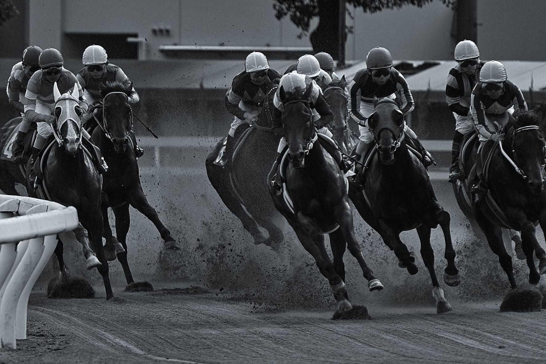 wallpaper horse sky belmont - photo #2