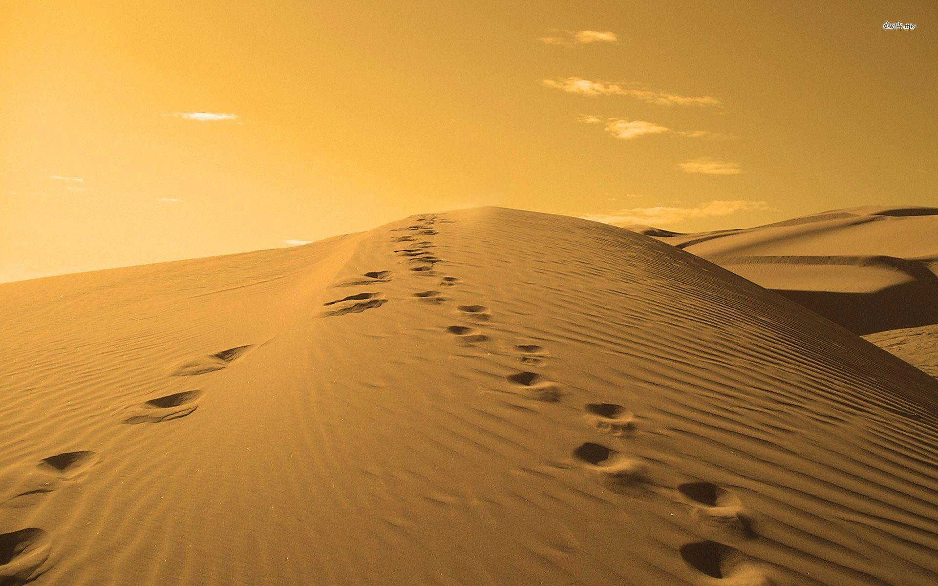 Man Cave Betekenis : Footprints in the sand wallpapers wallpaper cave