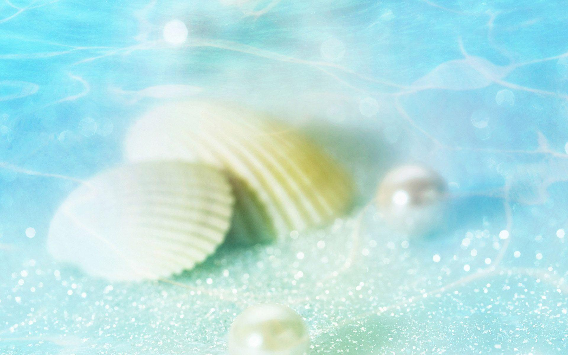 White Seashell In Water Wallpapers