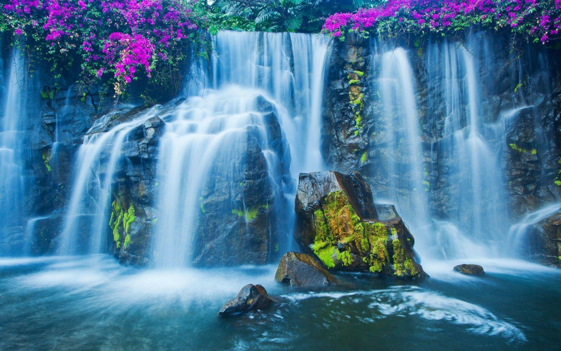 stones, moss, flowers, waterfall wallpapers