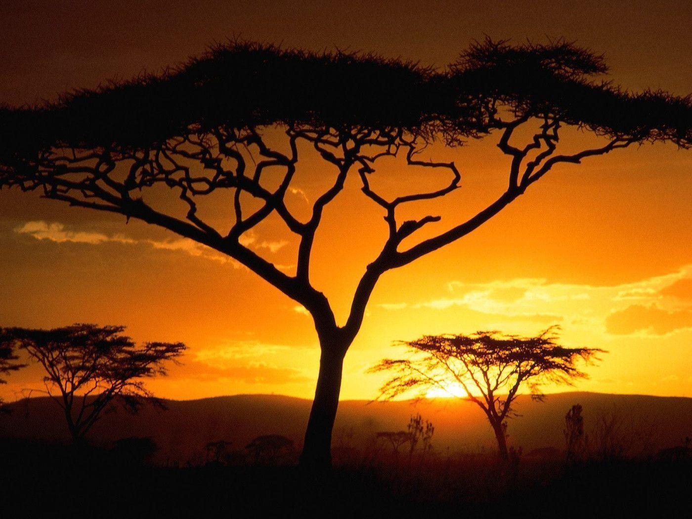 Tanzanian Sunset, Africa desktop wallpaper « Desktopia.