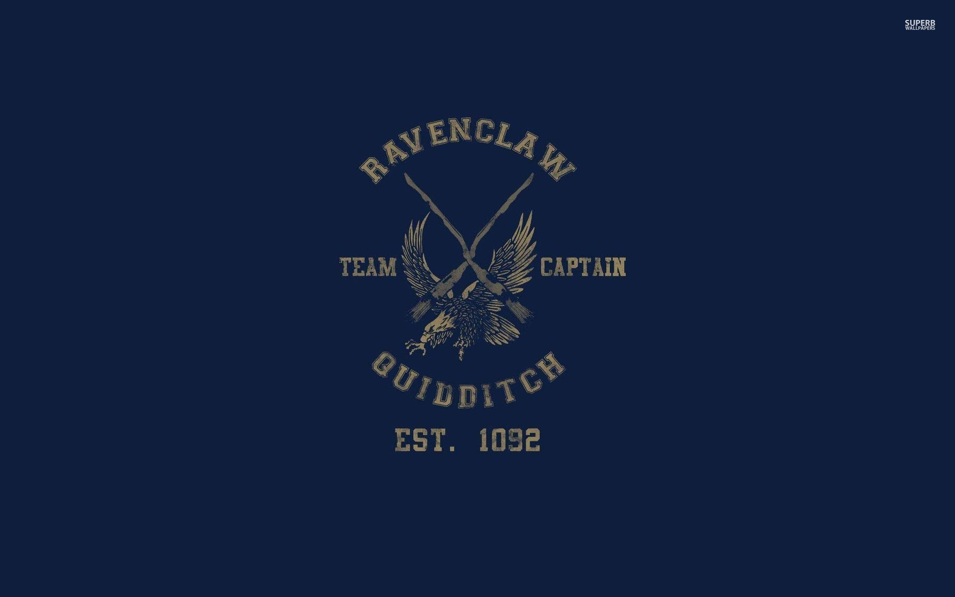 Ravenclaw Quidditch team - Harry Potter wallpaper - Vector .