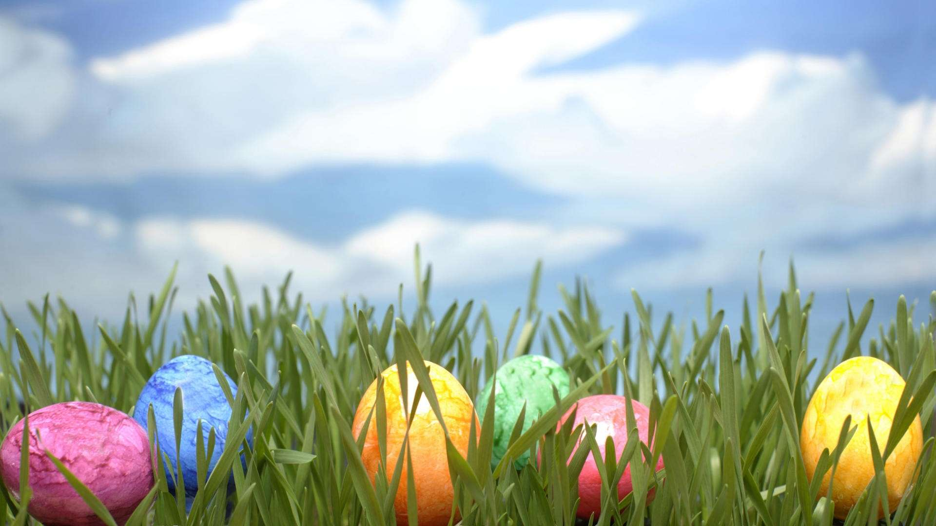 Easter Egg Backgrounds