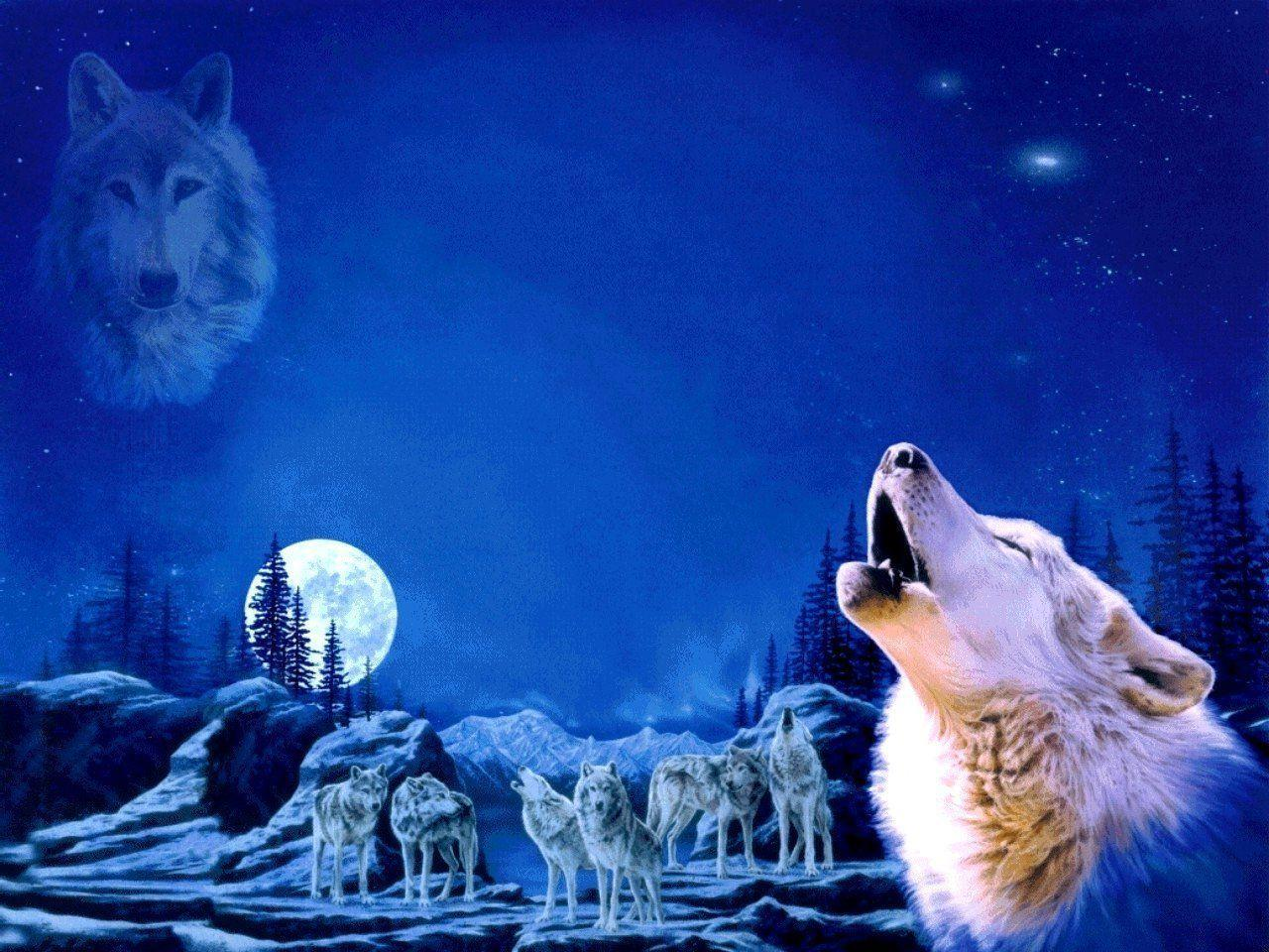 Wolf Howling Wallpapers - Wallpaper Cave