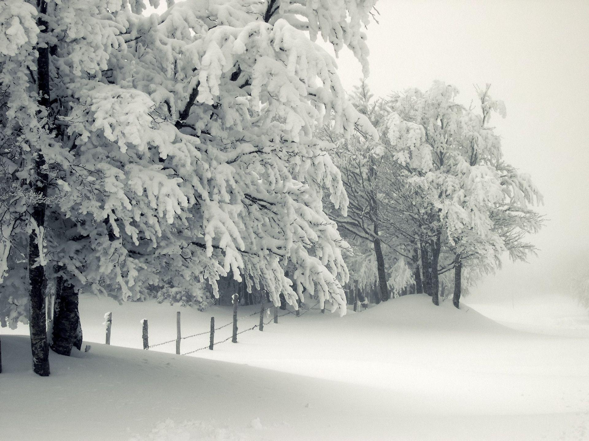 Pix For > Snow Storm Wallpaper
