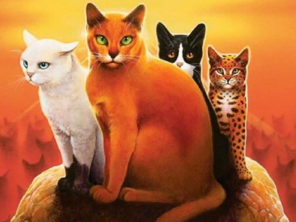 warrior cats wallpapers desktop wallpaper cave