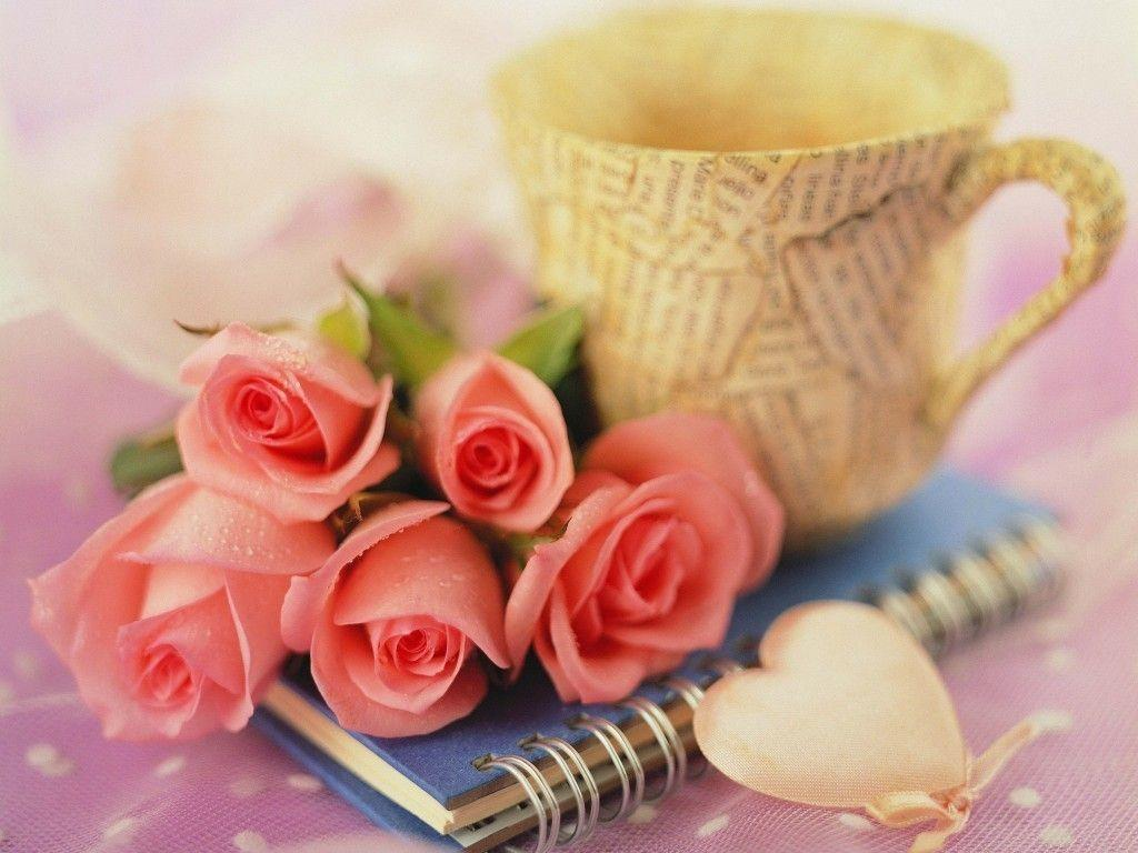 Love Flower Wallpaper Images : Love Flower Wallpapers - Wallpaper cave