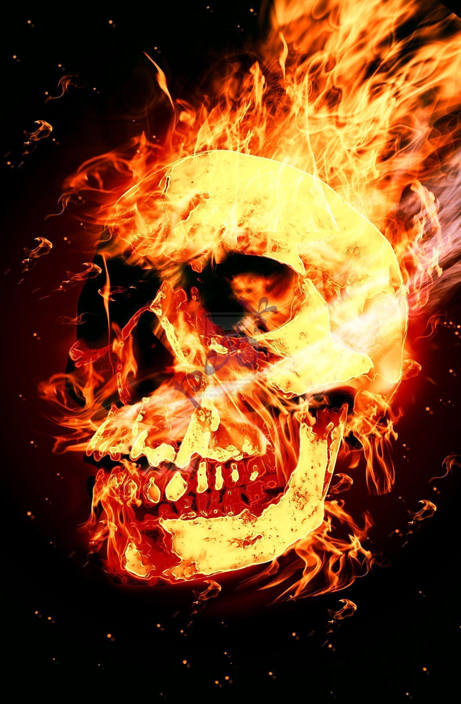 skulls on fire wallpapers wallpaper cave