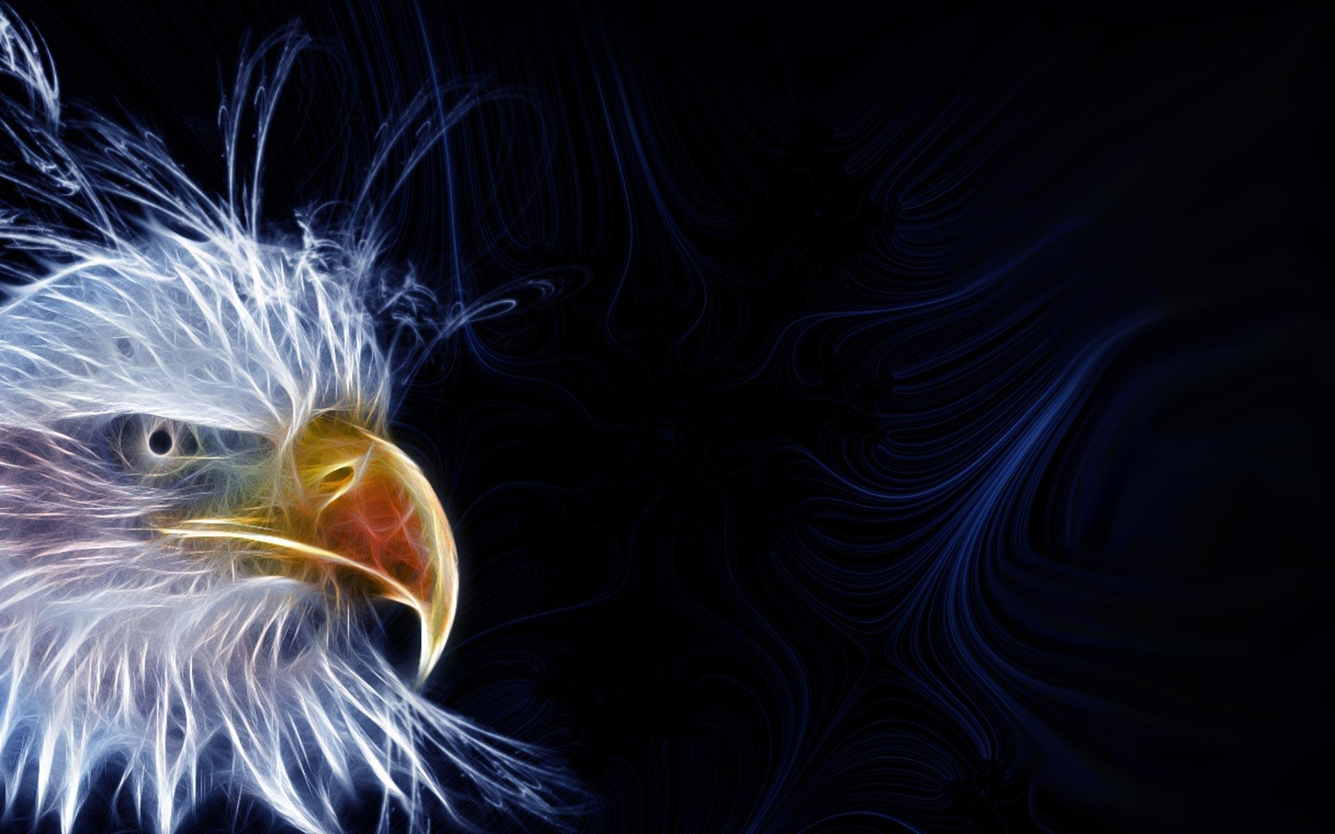 Eagle Desktop Wallpaper | quote-net