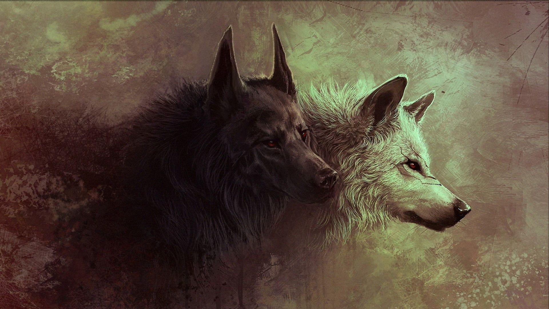 Wallpapers For > Wolf Wallpapers 1920x1080