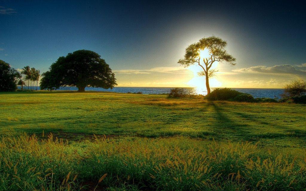 Beautiful Sunrise Wallpaper | Download HD Wallpapers