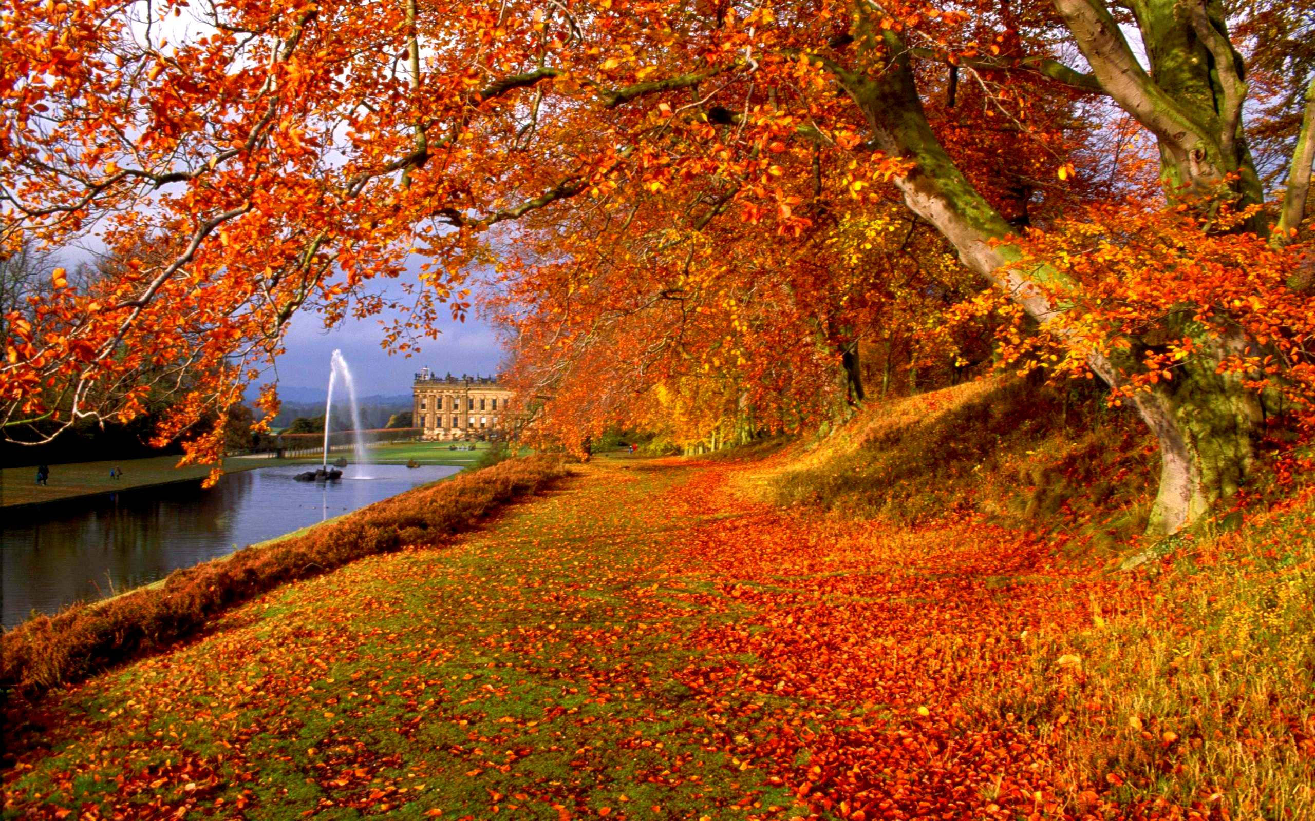 fall wallpaper widescreen monitor - photo #13