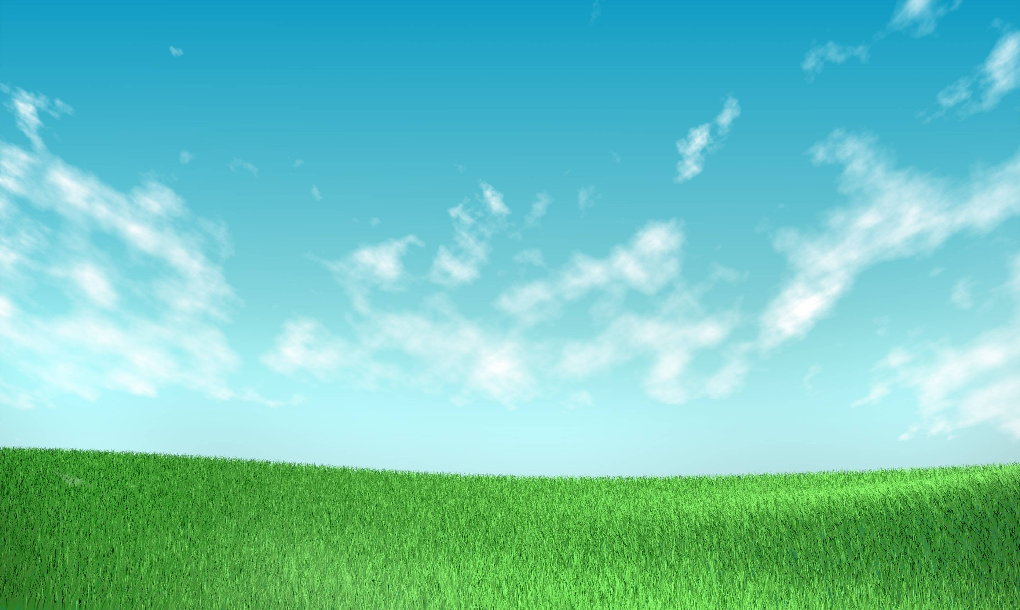 grass and sky backgrounds Wallpapers HD Image 10879