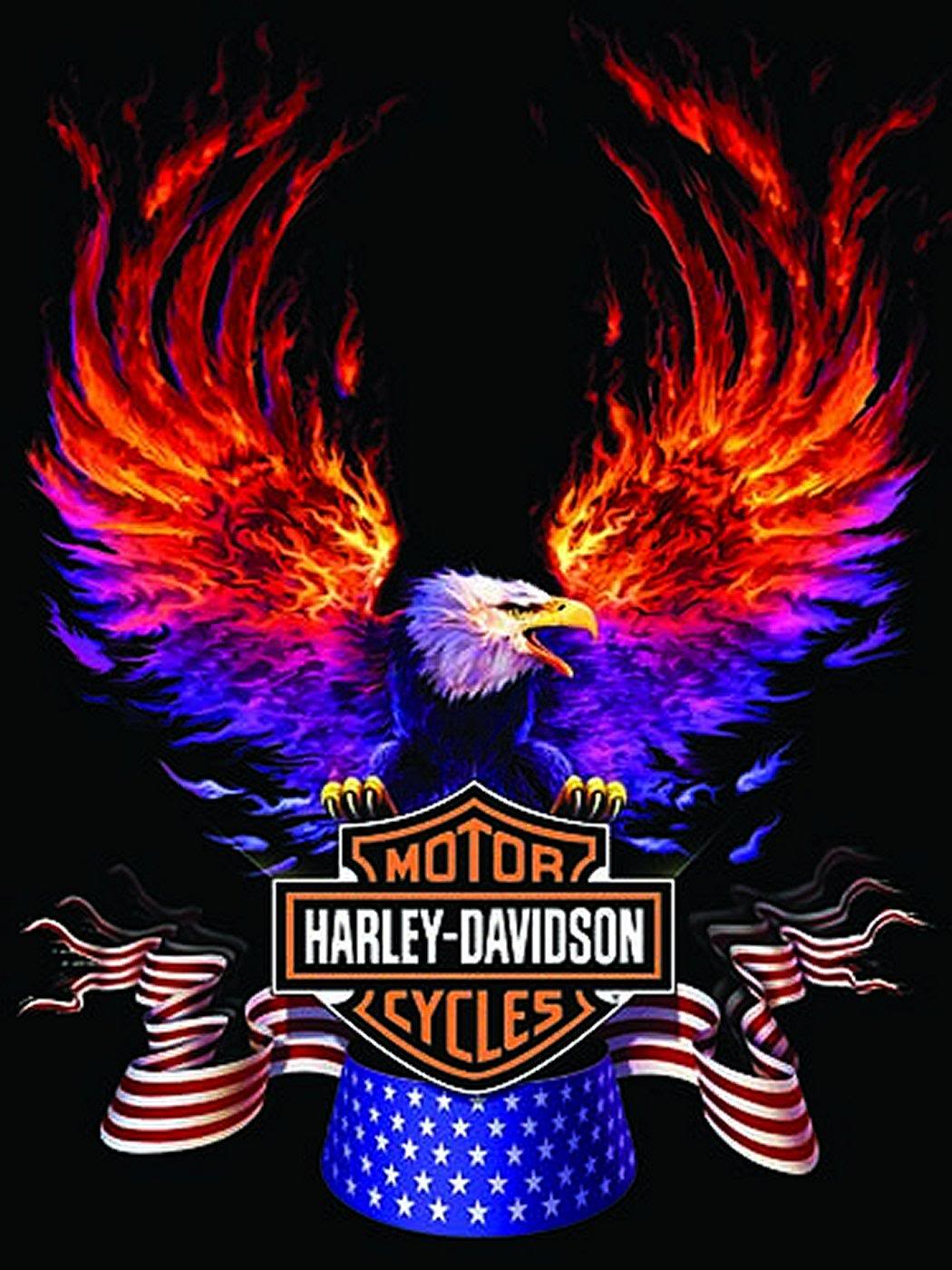 newest harley davidson logo wallpapers - photo #27