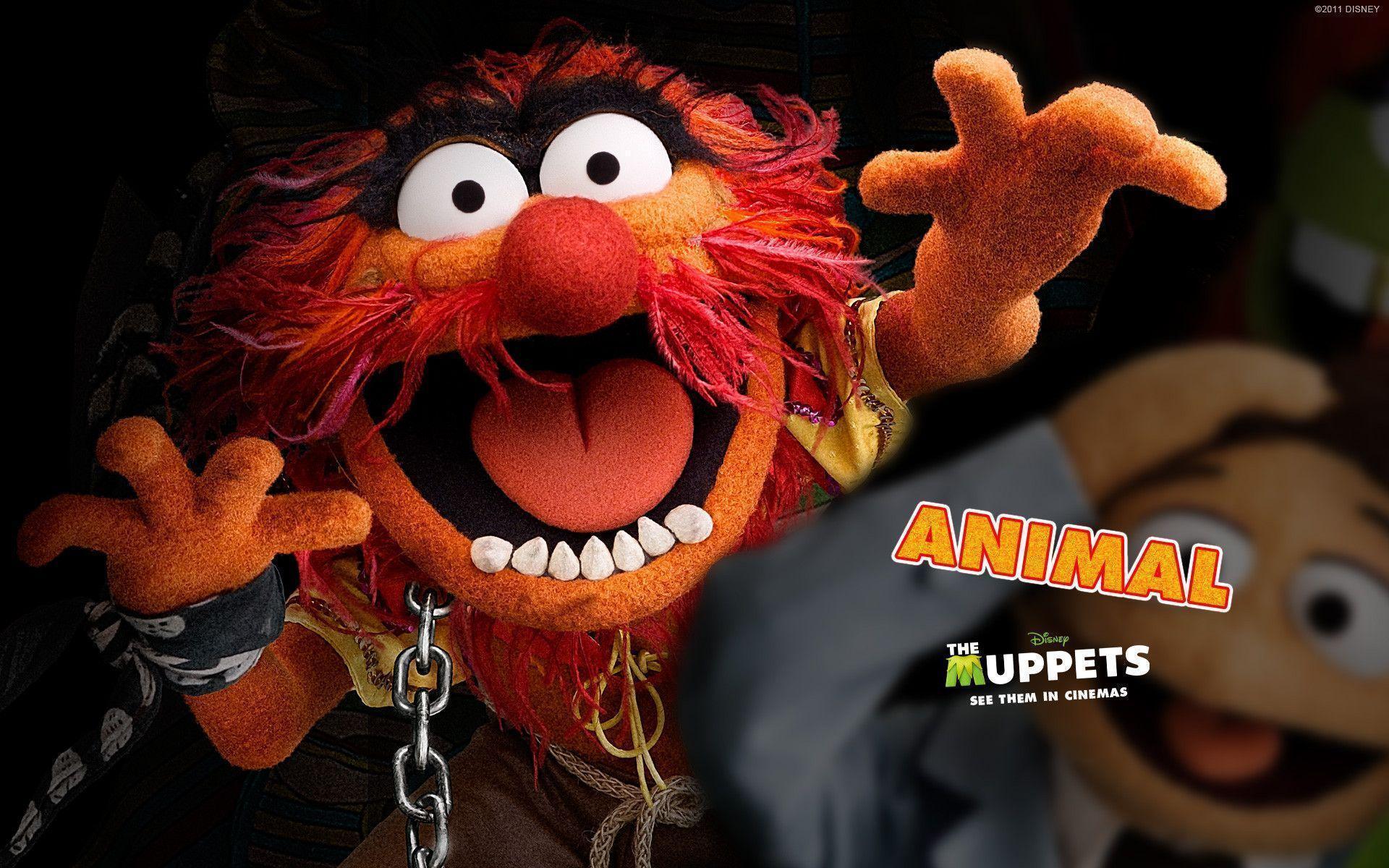 animal muppet wallpaper - photo #9